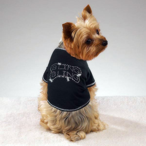 doggie-styles-2