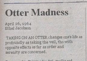 otter-madness