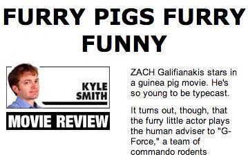 Furry Funny