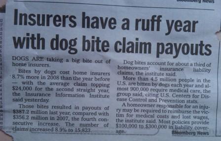 ruf insurance