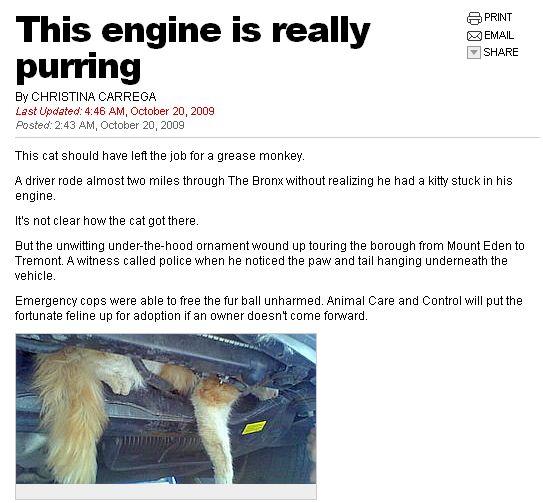 engine purring