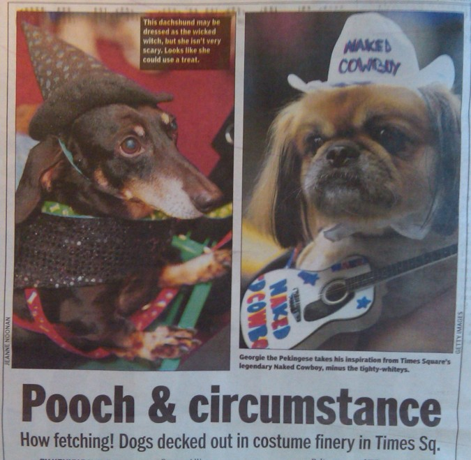 pooch and circumstance